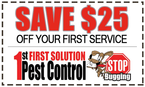 Save $25 Off Your First Service