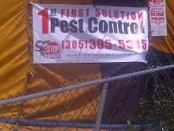 Termite Tenting - Termites in Miami FL & Termite Tenting in Miami | Fumigation